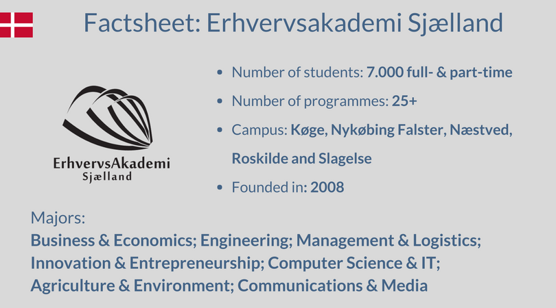 Which Student Profiles Can You Find At Erhvervsakademi Sjaelland